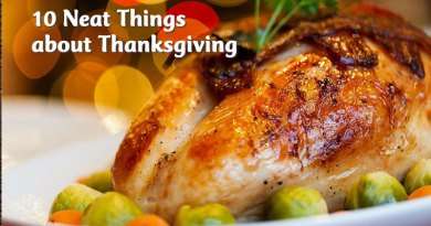 10 neat things about thanksgiving