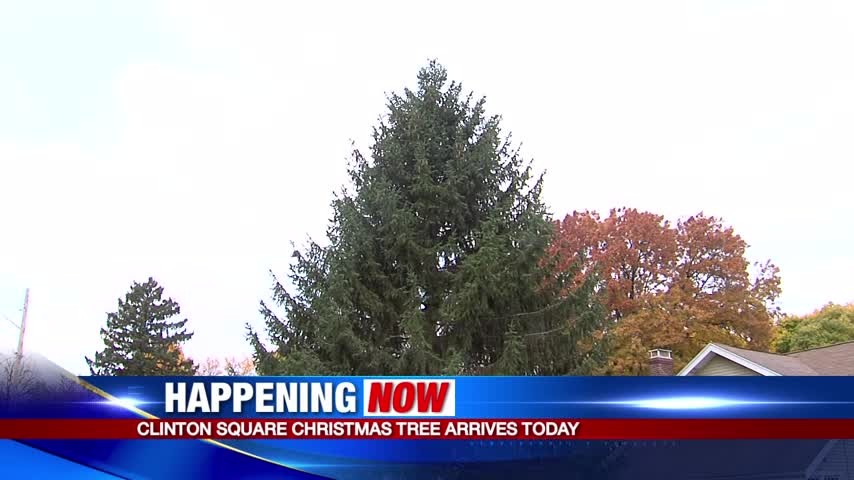 Clinton Square Christmas tree arrives downtown_81379735-159532