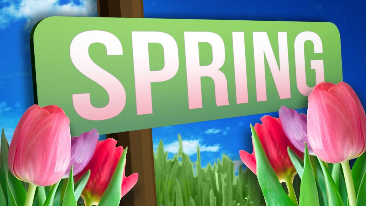 spring_1490001313504.jpg