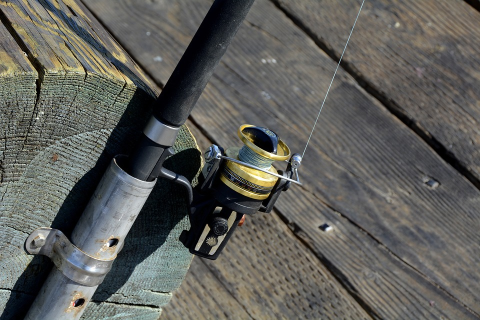 Fishing pole _1530626644673