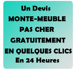 www location monte meuble toulouse fr