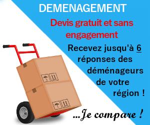 devis demenagement gratuit sans engagement - Location voiture / camion / utilitaire à Chambry (02000)