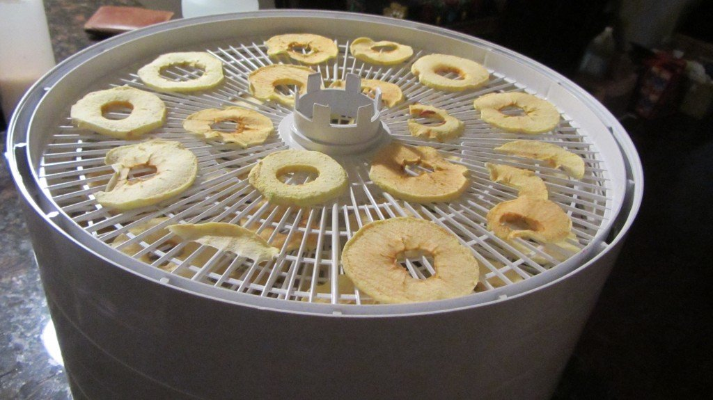 Apples on drying trays
