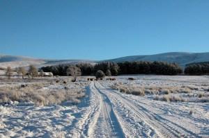 Balnafettach Farm in the snow