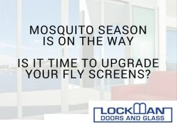 Advert for Fly screens