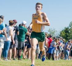 Boys Cross Country: 2017 Cheers and LoCoSports All-LoCo Team Selected