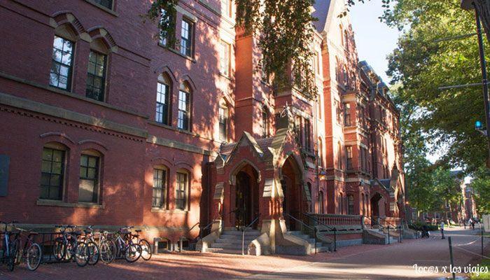 Harvard-3