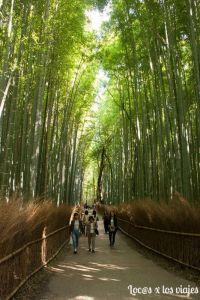 Bosque-de-Arashiyama-10