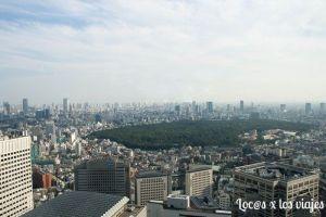 Vistas desde el Edificio del Gobierno Metropolitano de Tokio