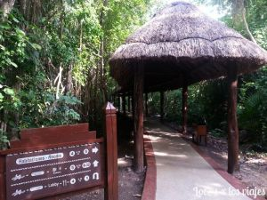 riviera_maya_hotel