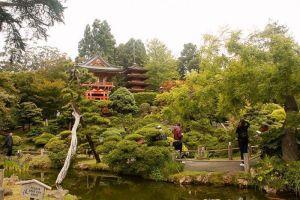 San Francisco: Jardín Japonés