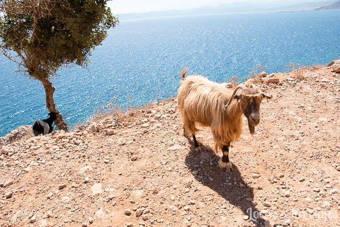 Tres días en Creta con coche de alquiler: Camino a Balos