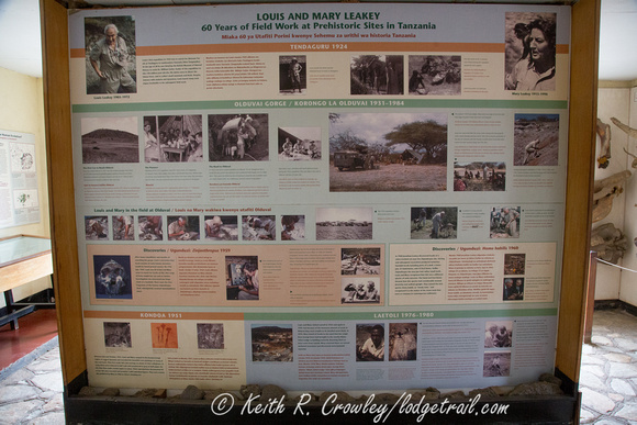 The Leakey story at the tiny Olduvai Gorge Museum in Tanzania