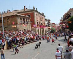 Toro con soga por las calles de Lodosa