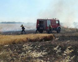 Tareas de extinción del incendio declarado el pasado junio en Carcastillo