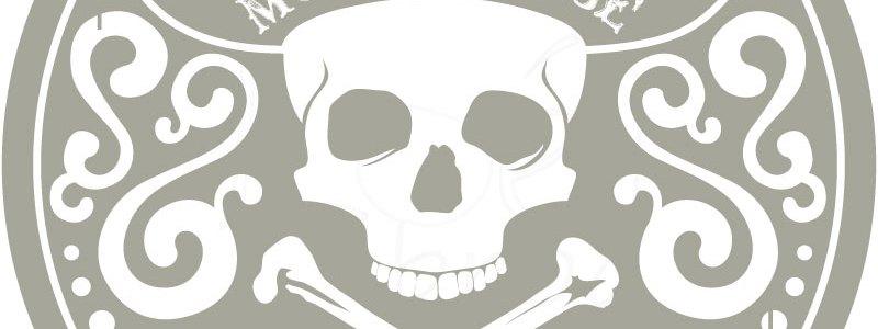 Un mot de passe plus sécurisé : halte aux pirates !