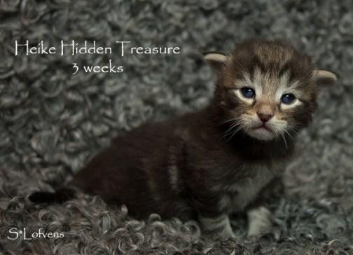 Heike Hidden Treasure, 3w