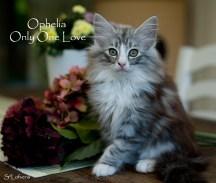 Ophelia 10 weeks