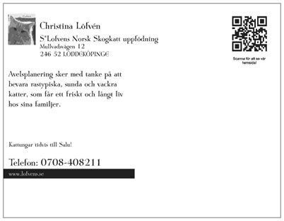 lofvens vykort baksida