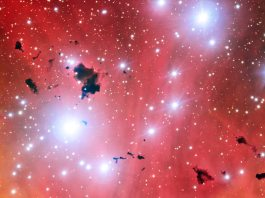 The Very Large Telescope snaps a stellar nursery and celebrates
