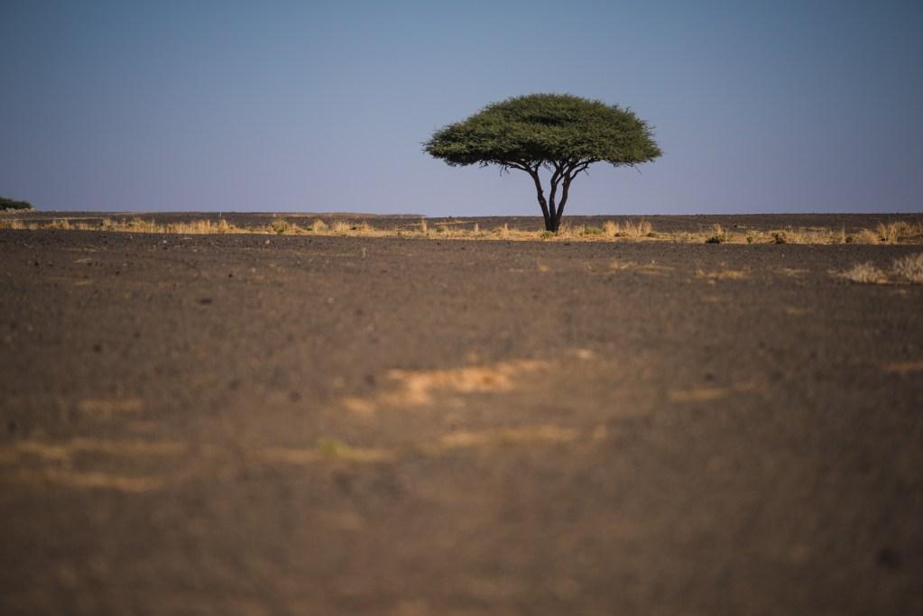 travel-destination-photographer-morocco-045