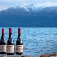 Séptima lanza Confiado Serie 2, con 3 nuevos vinos por descubrir.
