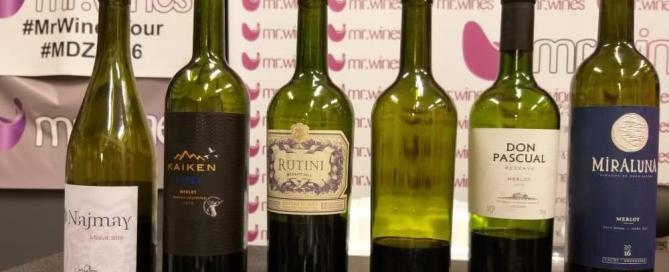 Catando Merlot a ciegas con los Argentina WineBloggers 2