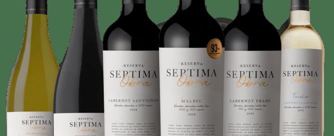 Bodega Séptima presenta la nueva imagen para su línea Séptima Obra