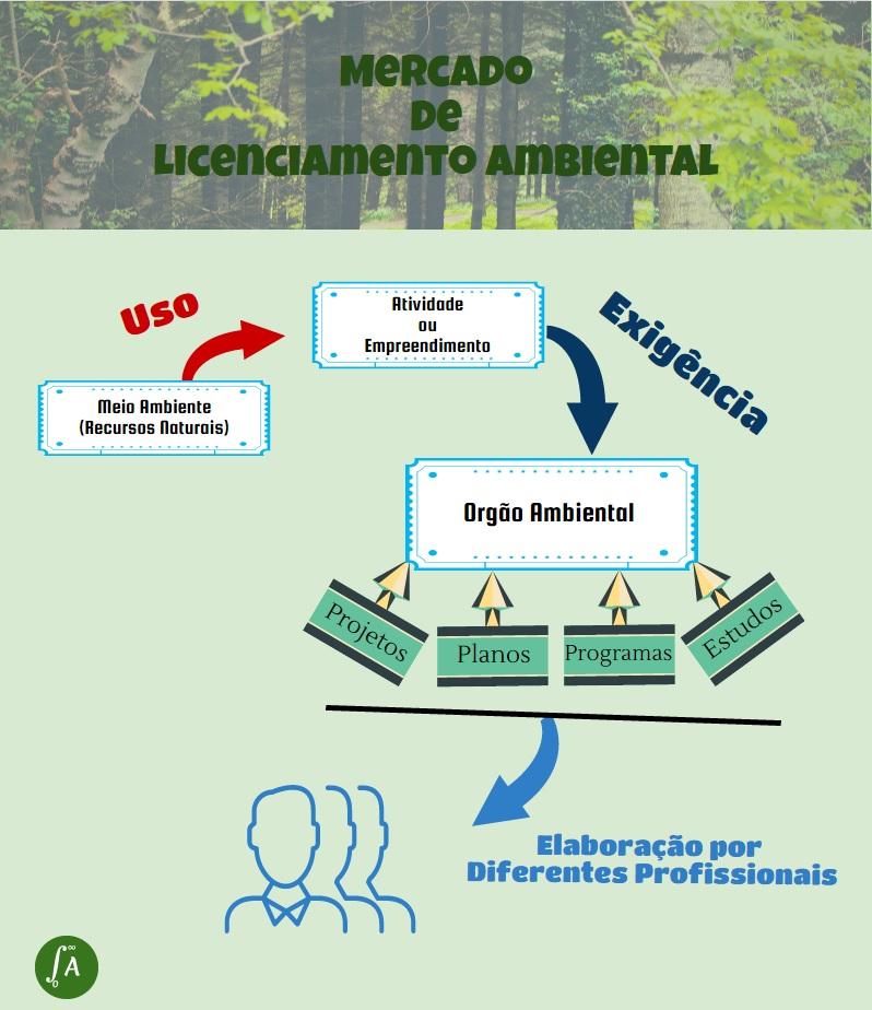 DIVERSIDADE DE ATUAÇÃO PROFISSIONAL NO MERCADO DE LICENCIAMENTO AMBIENTAL