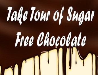 Take-Tour-of-Sugar-Free-Chocolate-2