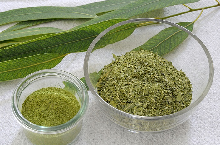 How to Stop Heroin and Opiate Drugs by Kratom (Mirtagyna Speciosa)