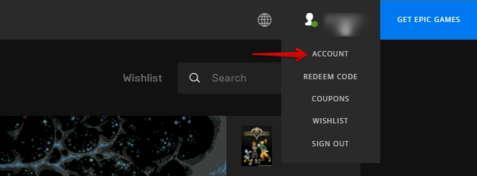 Epic games Account settings