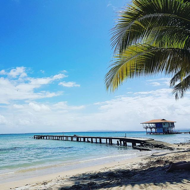 No stress #bocasdeltoro #panama #caribbean #beach #travel #traveling #instatags4likes #vacation #visiting #instatravel #instago #instagood #trip #holiday #photooftheday #fun #travelling #tourism #tourist #instapassport #instatraveling #mytravelgram #travelgram #travelingram #igtravel