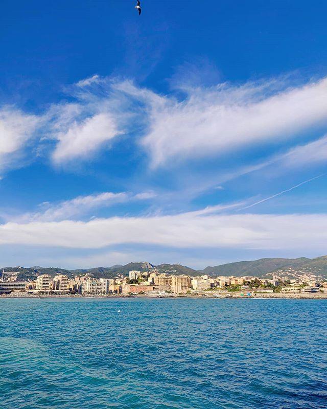 Deep blue breath, back on the sea •••#medsea #bluewater #genova#cruising #cruise #crew #sailing #travel #traveling #traveler #instatravel #instapassport #instatraveling #travelgram #travelingram #igtravel #travelblog #sea #travelstoke