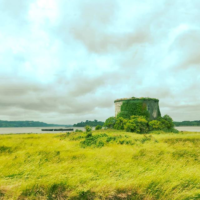 Ireland countryside journey •••#cork #ireland #train #postcard #clouds  #travel #travelling #traveler #instatravel #wanderlust #trip #lifeofadventure #doyoutravel #instapassport #instatraveling #mytravelgram #travelgram #travelingram #travelstoke #traveling #travelblog #instago