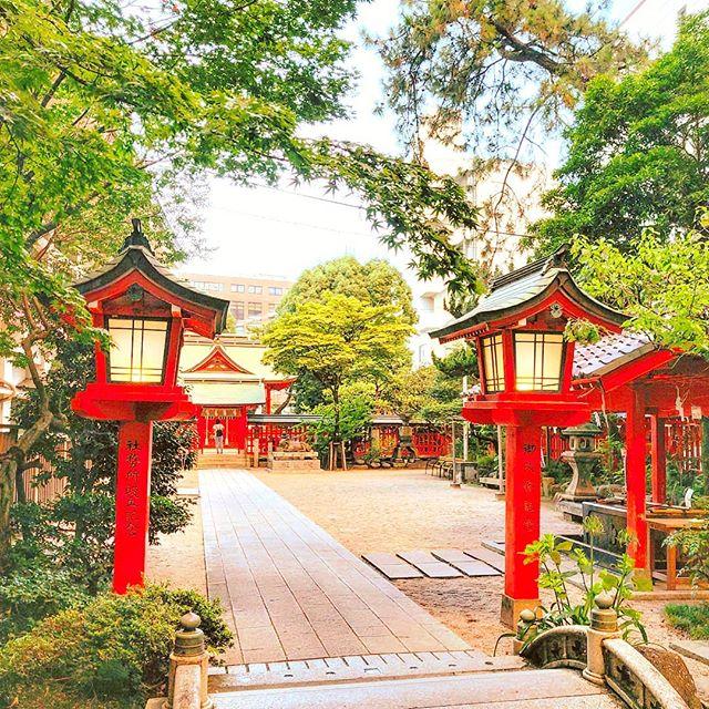 Calm down and relax ⛩️•••#fukuoka #temple #japan #garden #travel #travelling #traveler #instatravel #wanderlust #trip #lifeofadventure #doyoutravel #instapassport #instatraveling #mytravelgram #travelgram #travelingram #travelstoke #traveling #travelblog #instago