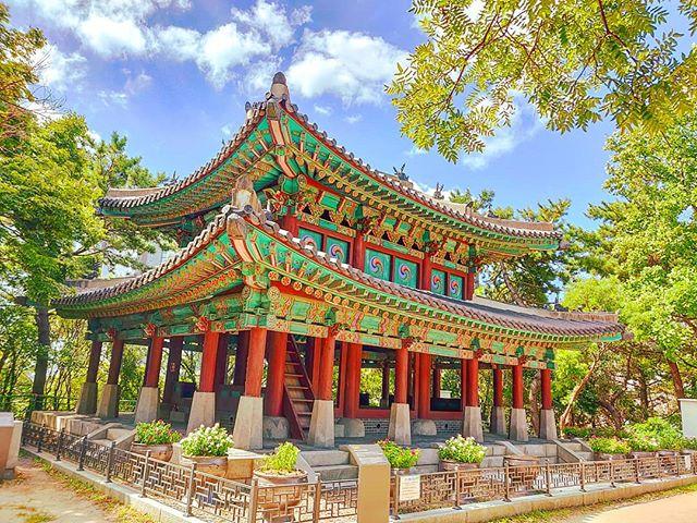 Japanese Castle in Busan •••#busa #korea #fortess #architecture #asia #travel #travelling #traveler #instatravel #wanderlust #trip #lifeofadventure #doyoutravel #instapassport #instatraveling #mytravelgram #travelgram #travelingram #travelstoke #traveling #travelblog #instago