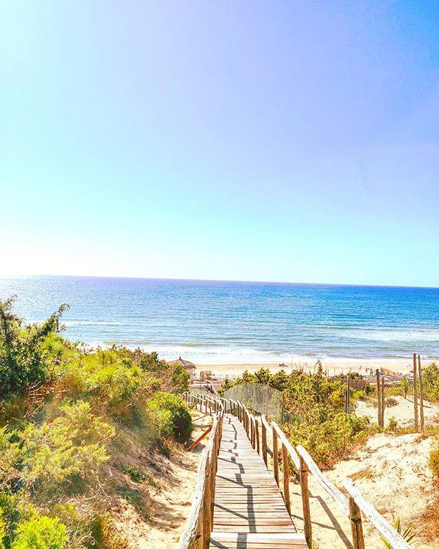Endless summer vibes 🤙 #sabaudia #travelawesome #summertime #beachwalk #travelingram #traveladdict #instatravel #travelling #travelblogger #summervibes #beachday #travelphotography #traveling #travelgram #summer #travels #beachlife #traveltheworld #beach #sand #travelblog #september