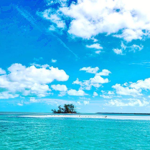Cast away in Bimini  #travels #instatravel #travelling #travelphotography #travelgram #island #travelislife #travelblog #bahamas🇧🇸 #travel #travelers #travelawesome #bahamas #traveling #beach #travel_captures #travelholic #traveler #traveltheworld #bimini