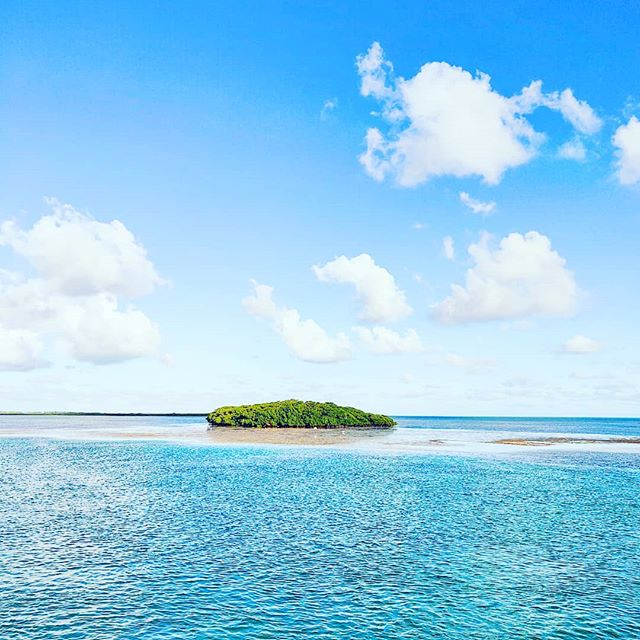 The nowhere Islannd#bimini #bahamas #beach #instatravel #travelphotography #travelblog #travelgram #traveler #seaview #islandlife #traveldiaries #seashore #travelling #travelphoto #beachvibes #sea #islands #traveller #travelblogger #travelstoke #travels #beachlife #travelawesome #island #travelpics #travel