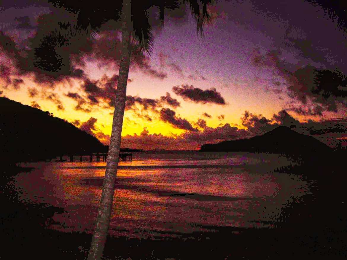 Purple feel 🤙 Whitsunday Islands, Australia 2008#whitsundays #hamiltonisland #sea #clouds #travelgram #travelpics #traveling #seattle #travel #australia #travelphoto #traveller #traveladdict #travelling #travelblog #travelingram #seascape #travelawesome #travels #travelphotography #travelstoke #sunset #travelholic #seaside #palm #island #traveler #travellife #downunder