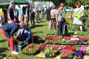 Marché aux fleurs et aux plantes OLIVET @ Plaine des martinets