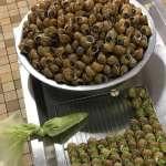Escargots en coquilles au beurre persillé
