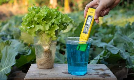 Como medir o pH da água?