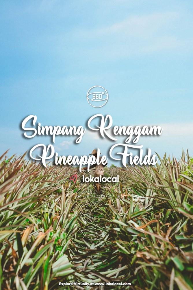 Ultimate Virtual Tours in Malaysia - Simpang Renggam Pineapple Fields -www.lokalocal.com