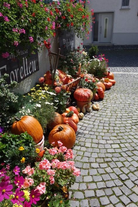 Fischerviertel Ulm II
