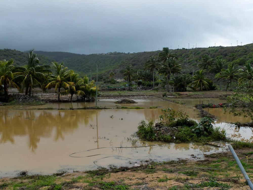 Rodrigues - Inondations après le cyclone