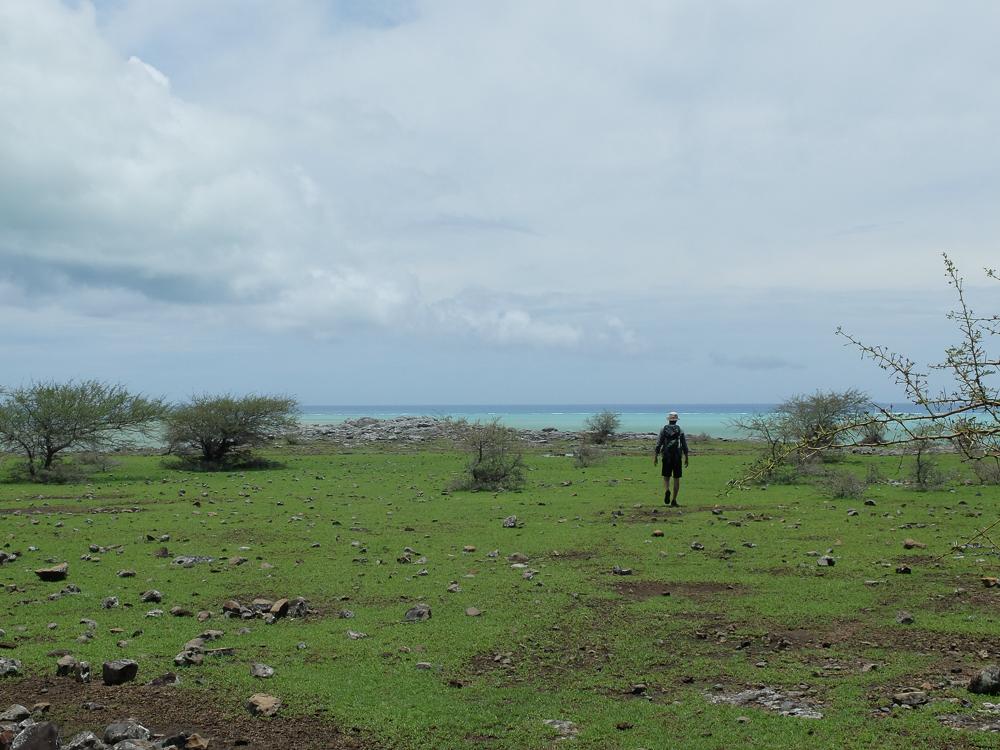 Rodrigues - Arrivée sur la plateau calcaire de la Plaine Mapou