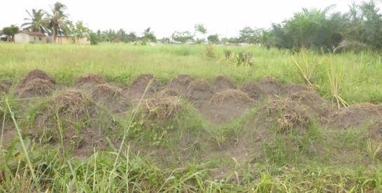 Togo : le Forum national sur le foncier au Togo, pour redresser le secteur