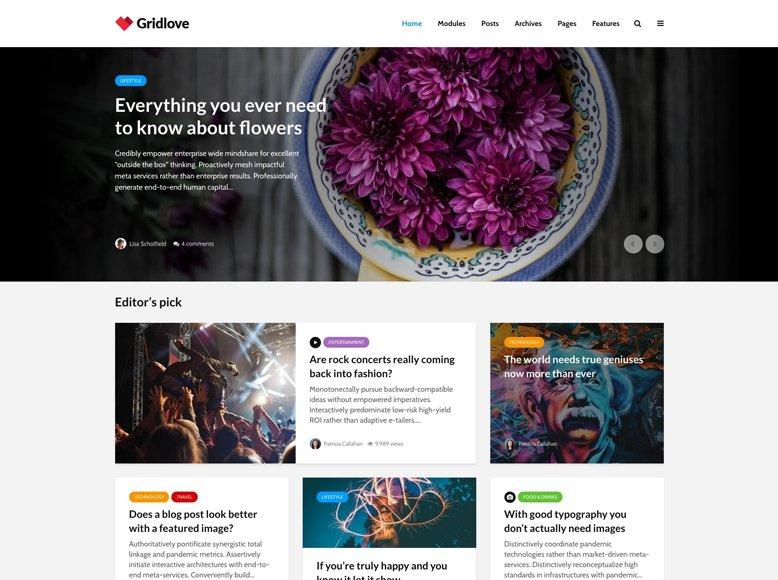 Gridlove - Plantilla WordPress para revistas online creativas estilo Instagram o rejilla